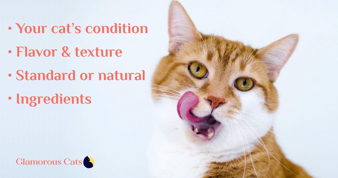 Feautures to consider in cat treats