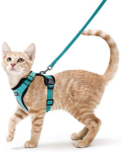 rabbitgoo Cat Harness and Leash for Walking, Escape Proof Soft Adjustable Vest Harnesses for Cats, Easy Control Breathable Reflective Strips Jacket