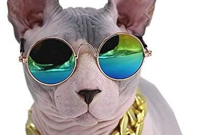 Kitipcoo Cool Stylish and Funny Pet Sunglasses Classic Retro Circular Metal Prince Sunglasses Necklace Set for Sphynx Cats Chihuahua or Small Dogs Fashion Costume (Sunglasses+Necklace)