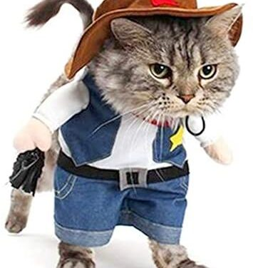 Meihejia Funny Cowboy Jacket Suit – Super Cute Costumes for Small Dogs & Cats