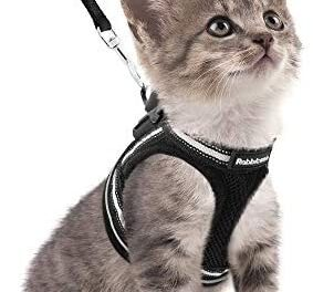 rabbitgoo Cat Harness and Leash Set for Walking Escape Proof, Adjustable Soft Kittens Vest with Reflective Strip for Cats, Step-in Comfortable Outdoor Vest