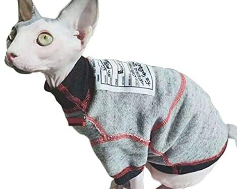 Bonaweite Hairless Cats Sweatshirt Turtleneck Vest, Breathable Adorable Cat Wear Shirt Clothes, Cat's Pajamas Jumpsuit for Sphynx, Cornish Rex, Devon Rex, Peterbald