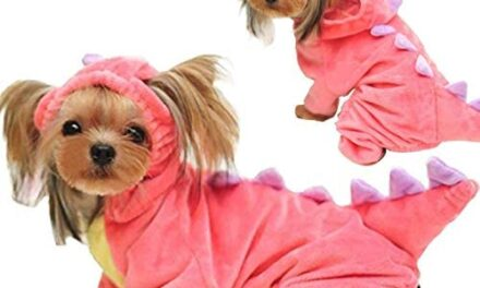 GBD Halloween Costume for Pet Dog Cat Dinosaur Plush Hoodies Animal Fleece Jacket Coat Warm Outfits Clothes for Small Medium Dogs Cats Halloween Cosplay Apparel Accessories