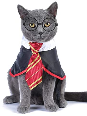 Impoosy Halloween Cat Costume Small Dog Wizard Pet Clothes Cute Apparel Puppy Shirts with Glasses