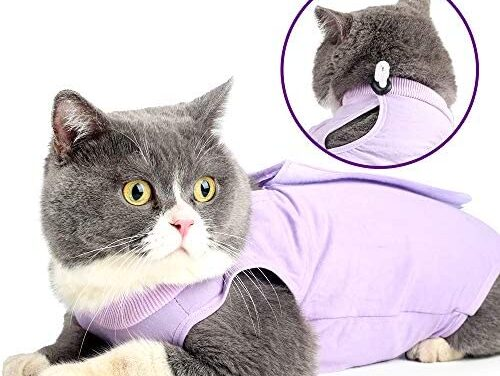 Glorisun Cat Recovery Suit – Cat Breathable E-Collar Alternative After Surgery Wear Anti Licking Wounds